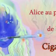 Alice pays cigar style - Image A