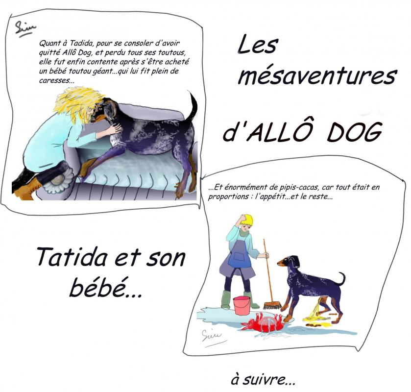 Bd me saventures allo dog 4